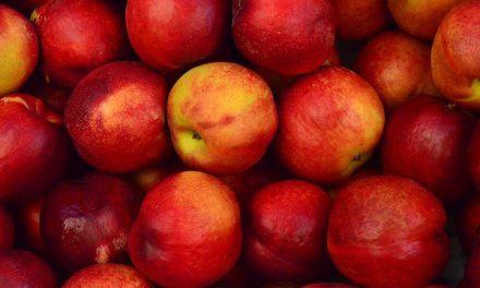 Manzanas, peras y ruibarbo: falsas comparaciones