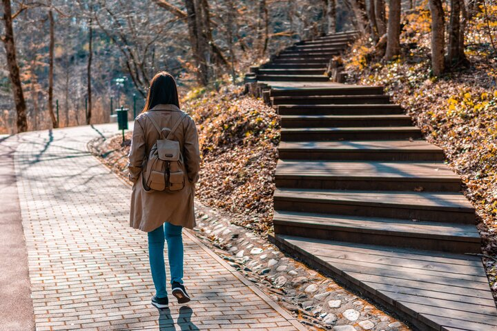 Loneliness increases the risk of type 2 diabetes
